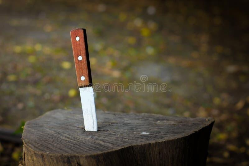 Mes met houten die handvat, in een stuk van boomstam wordt geplakt royalty-vrije stock afbeeldingen