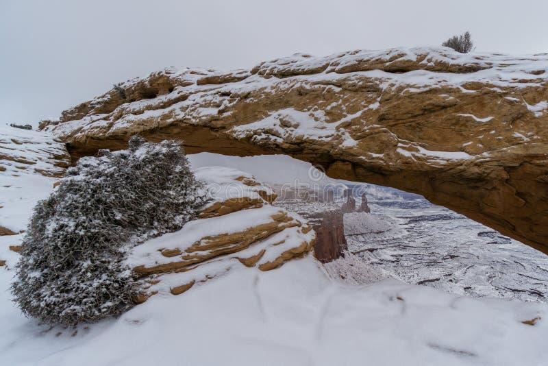Mesa Arch nell'inverno fotografia stock libera da diritti