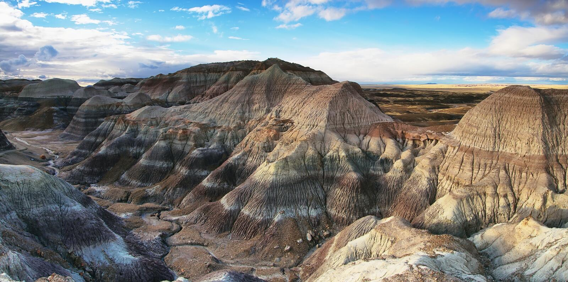 MESA bleu, Forest National Park pétrifié photos libres de droits