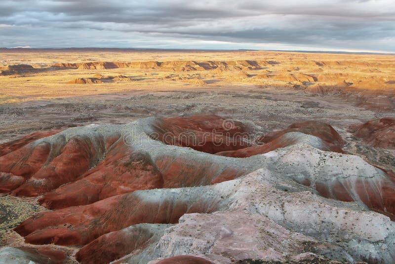 MESA blu, Forest National Park petrificato fotografia stock libera da diritti