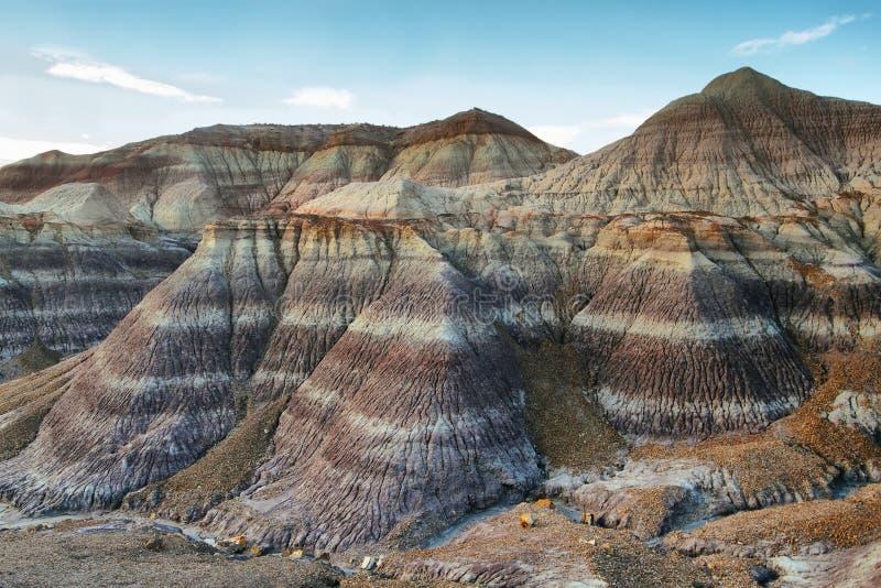 MESA blu, Forest National Park petrificato immagini stock