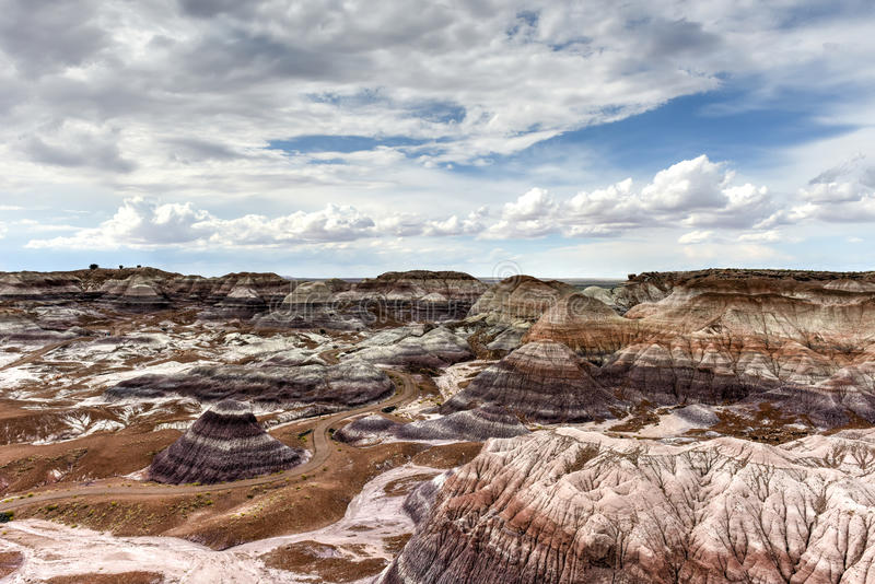 MESA blu - Forest National Park petrificato fotografie stock