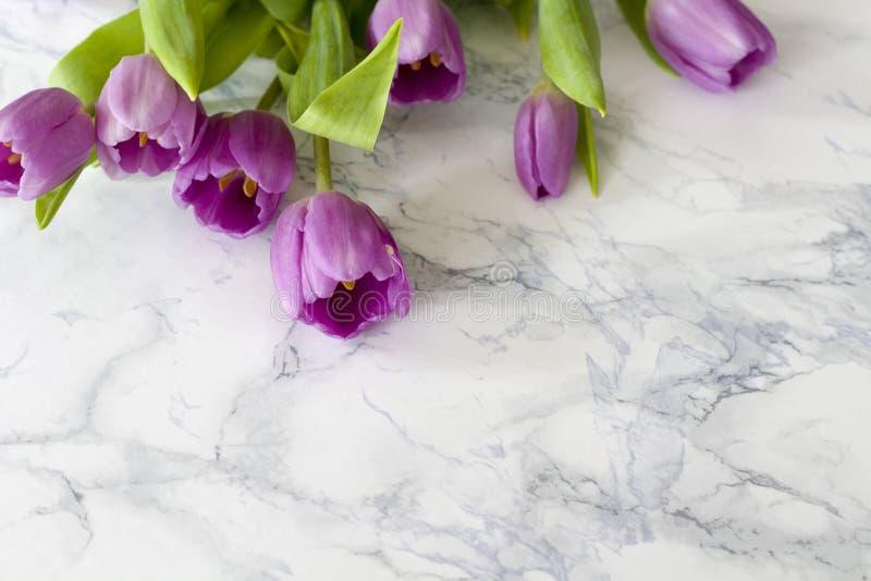 A mesa de escritório da mulher com flor da mola floresce, tulipas no fundo branco fotografia de stock