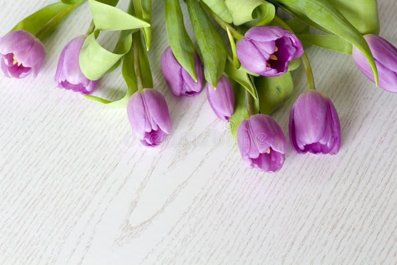 A mesa de escritório da mulher com flor da mola floresce, tulipas no fundo branco imagem de stock royalty free
