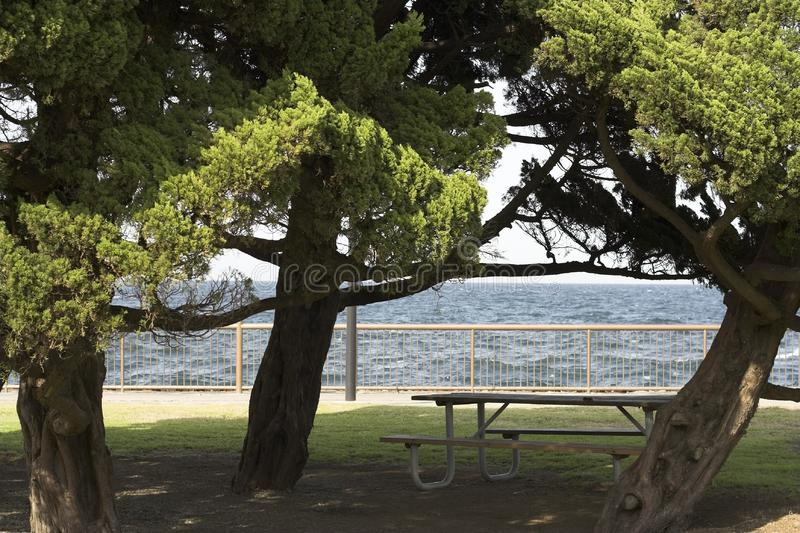Mesa de picnic fotografía de archivo