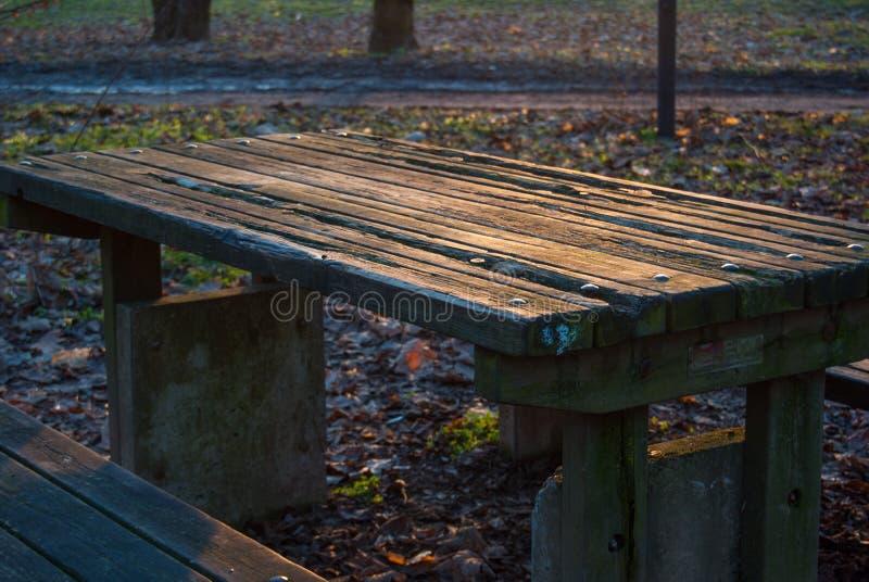 Mesa de picnic de madera vieja en el parque imágenes de archivo libres de regalías