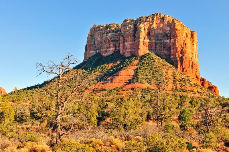 Mesa in de woestijn van Arizona royalty-vrije stock foto's