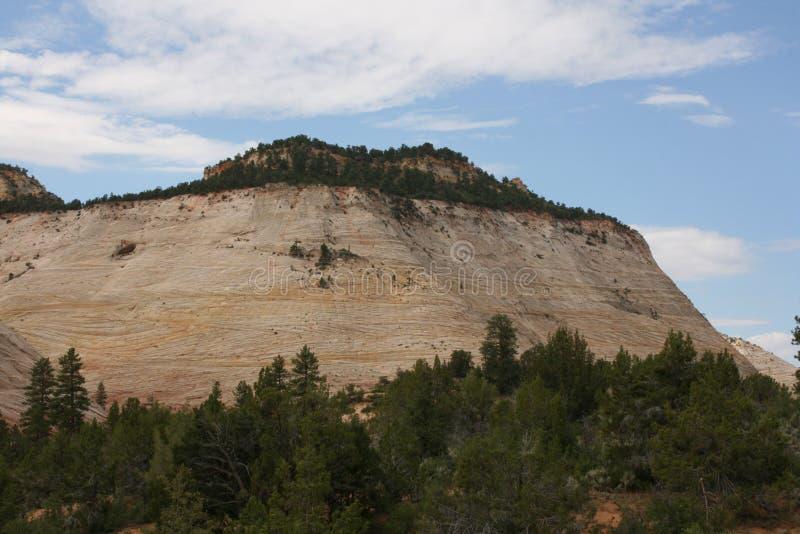MESA della scacchiera, Zion Canyon National Park, Utah immagine stock libera da diritti