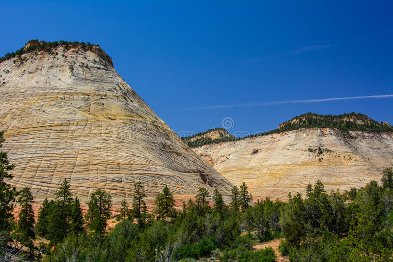 MESA della scacchiera in Zion National Park, Utah immagini stock