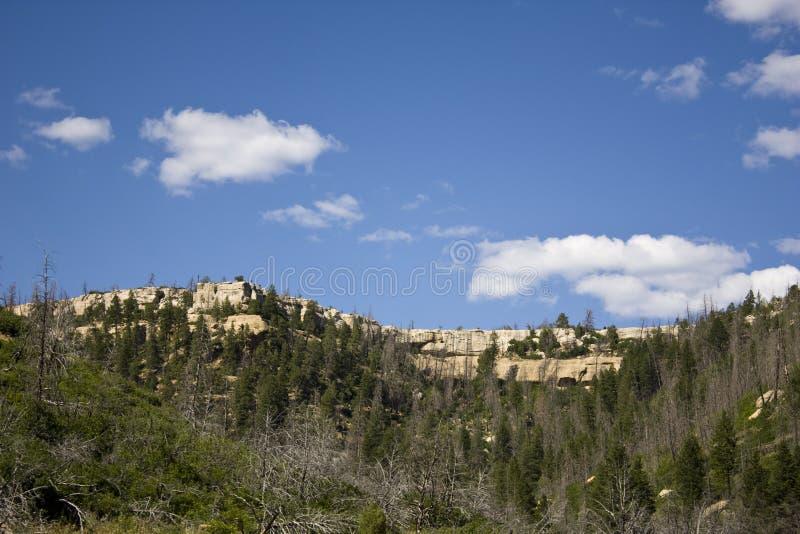 mesa-nationalparkverde royaltyfria foton