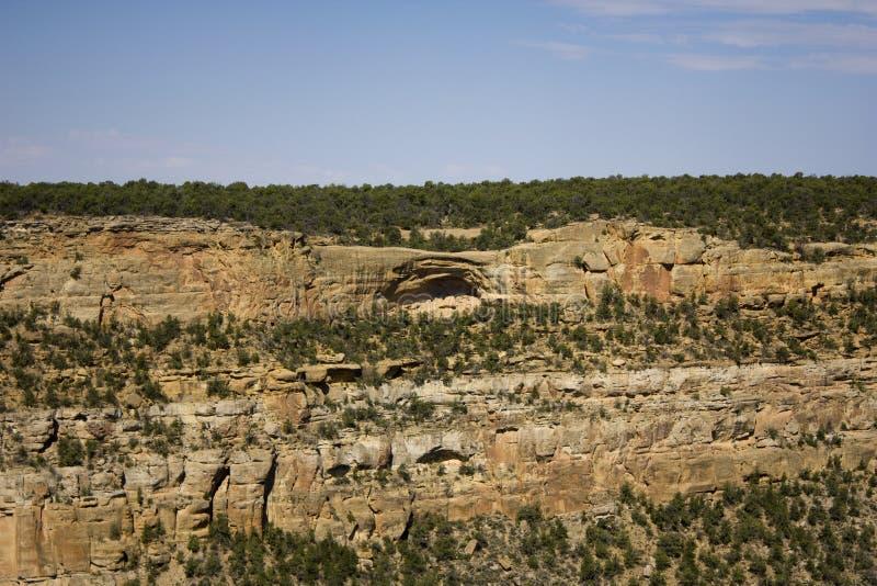 mesa-nationalparkverde arkivbilder