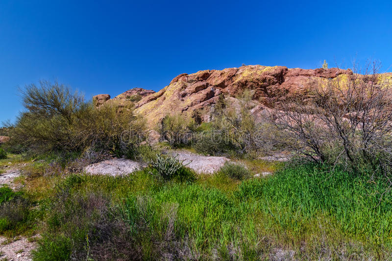 Mesa Trail Superstition Mountain Wilderness nero Arizona fotografie stock