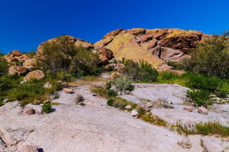 Mesa Trail Superstition Mountain Wilderness nero Arizona immagine stock libera da diritti