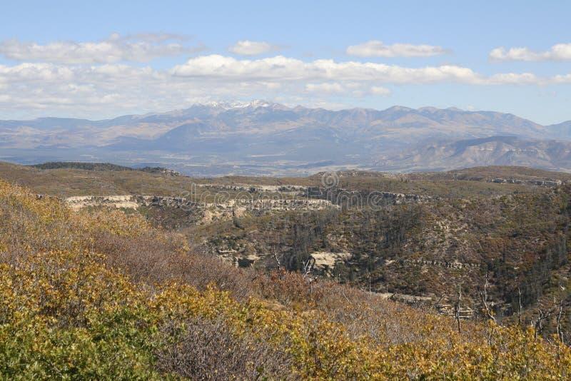 Mesa verde国家公园,科罗拉多,美国 免版税库存照片