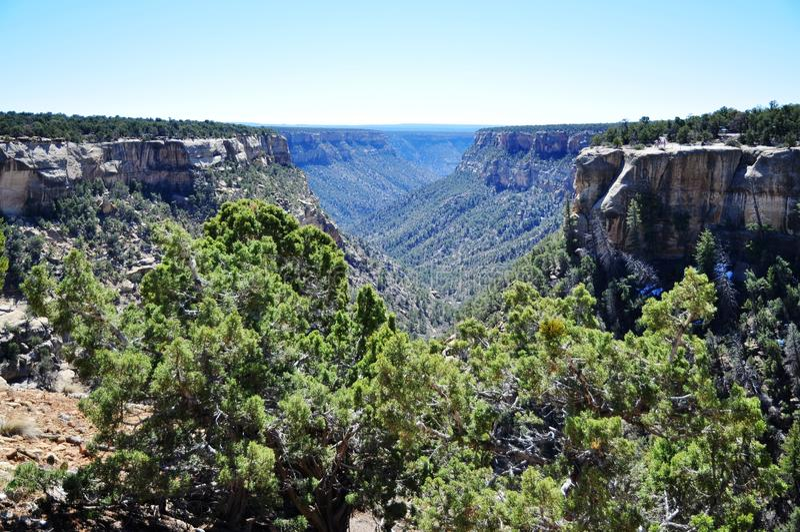Mesa Verde国家公园 库存图片