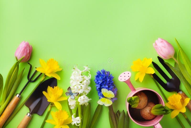 Mesa verde com ferramentas de jardinagem, muda de flores e borboletas para cima Linda paisagem da primavera imagens de stock