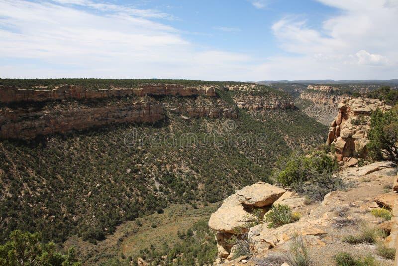 Mesa Verde National Park in Colorado, de V.S. royalty-vrije stock fotografie
