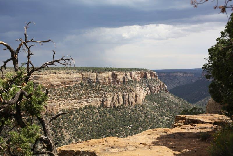 Mesa Verde National Park in Colorado, de V.S. stock foto's