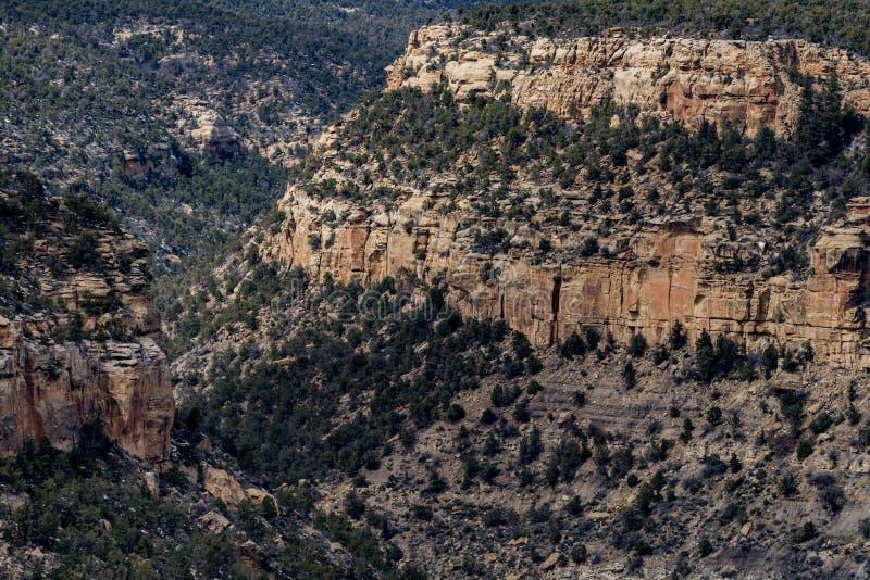 MESA-verde Nationalpark-Wüstenberglandschaft lizenzfreie stockfotografie