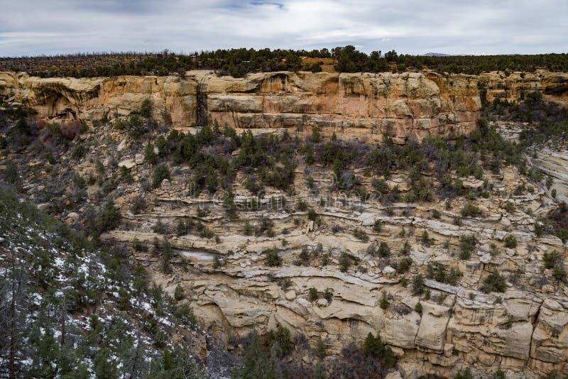 MESA-verde Nationalpark-Wüstenberglandschaft stockbilder