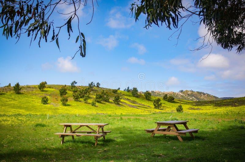 Mesas de picnic fotografía de archivo