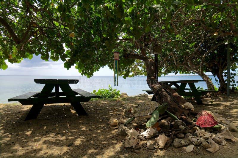 Mesas de picnic en el ajuste tropical fotos de archivo libres de regalías