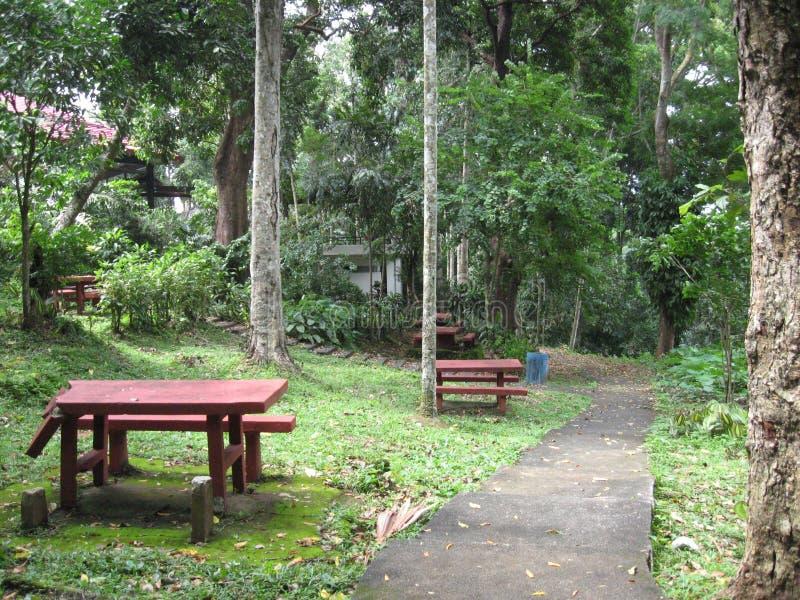 Mesas de picnic en los jardines bot?nicos de Makiling, Filipinas imágenes de archivo libres de regalías