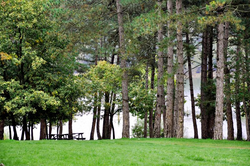 Mesas de picnic y río vacíos foto de archivo libre de regalías