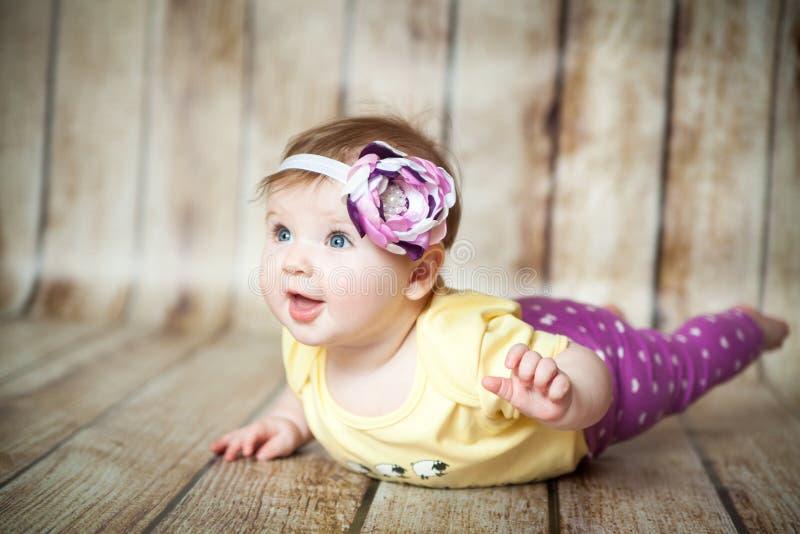 6 meses bonitos da menina fotos de stock