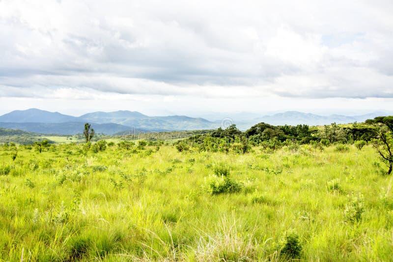Meseta de Nyika en Malawi imagenes de archivo