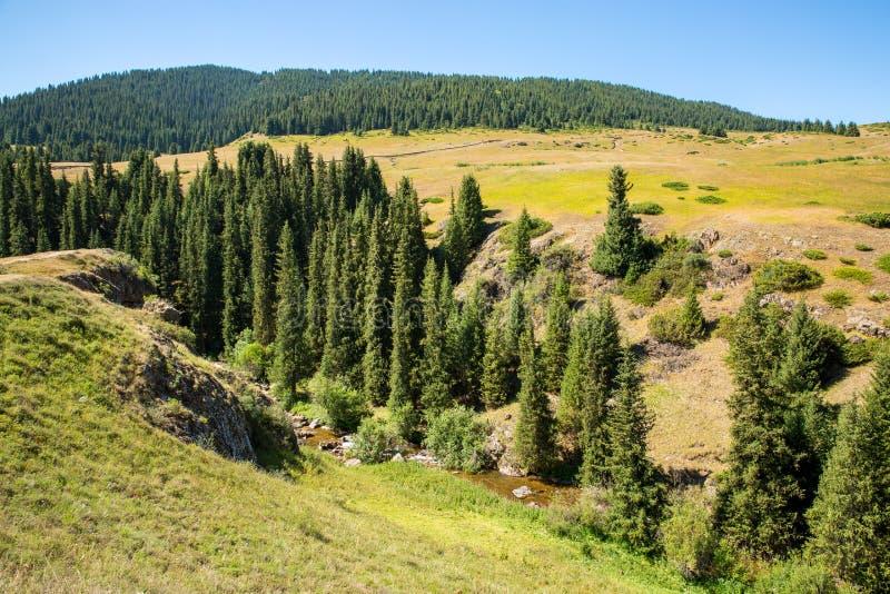 Meseta del montaje en la montaña de Tien Shan en Almaty, Kazajistán, Asia en el verano imagen de archivo