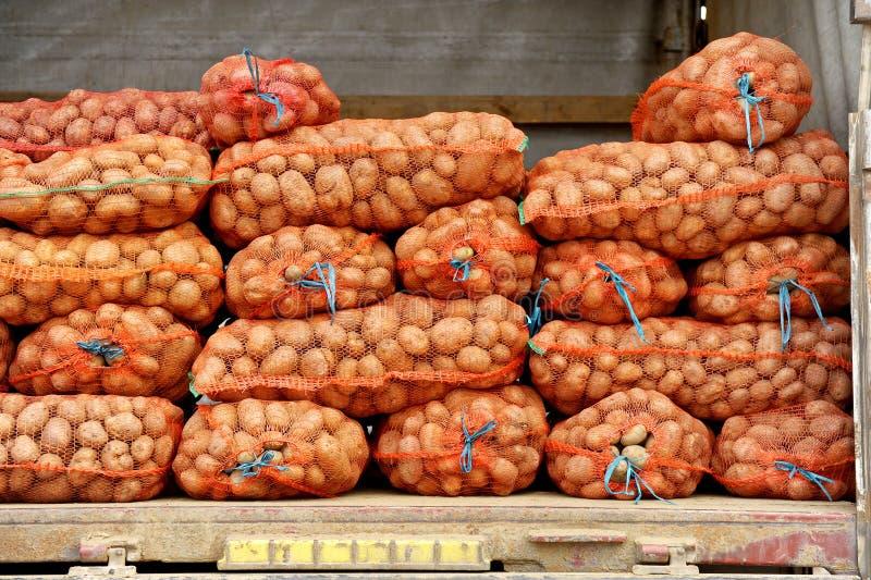 Mesh Bags With Potatos In un camión fotos de archivo libres de regalías
