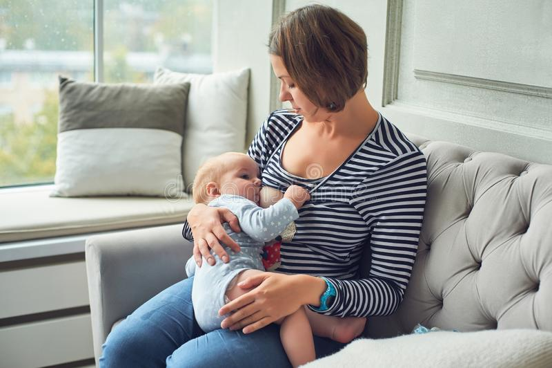 8 mesi del bambino che mangia il latte del ` s della madre Generi il neonato infantile di allattamento al seno, ubicazione sull'i fotografie stock libere da diritti