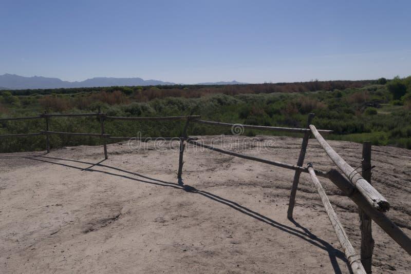 Mesilla谷树丛俯视 免版税库存图片