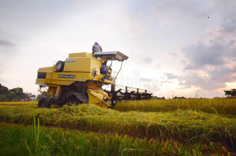 Mesin padi stock image