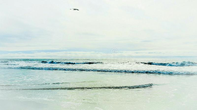 Mesmerizing, captivating, luring beauty of the Pacific Ocean royalty free stock photography