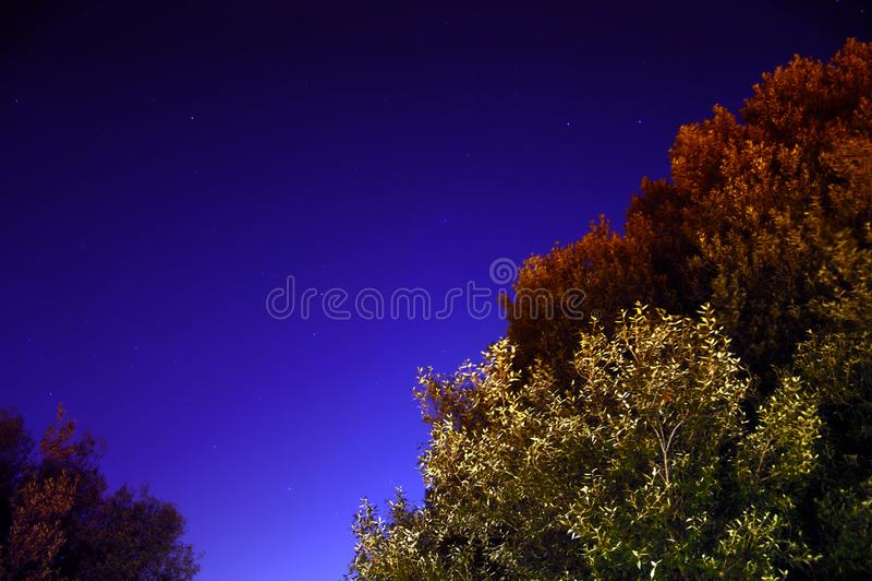 Mesmo no céu estrelado, há umas cores bonitas imagem de stock royalty free