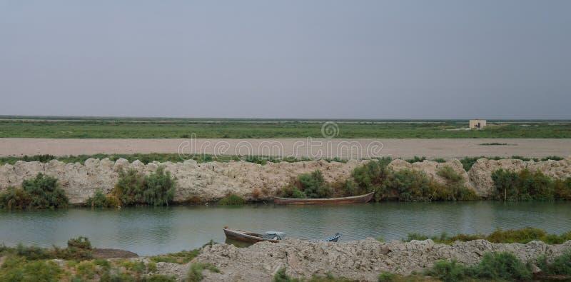 Mesopotamian болота, среда обитания арабов aka Madans болота, Басры Ирака стоковое изображение rf