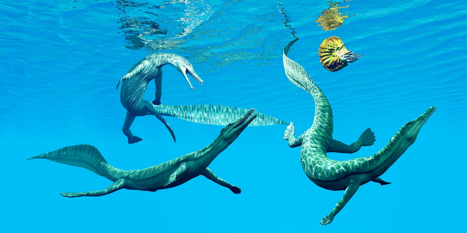 Mesosaurus Marine Reptiles. Mesosaurus reptiles go after an Ammonite which was a frequent prey in the oceans of the Permian Period stock illustration