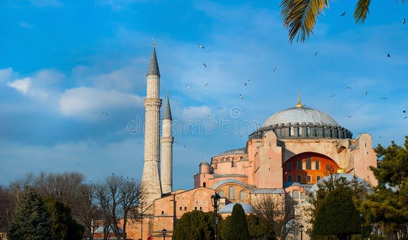 Mesquita do museu de Ayasofya do sophia de Hagia com abóbadas e minaretes imagens de stock royalty free