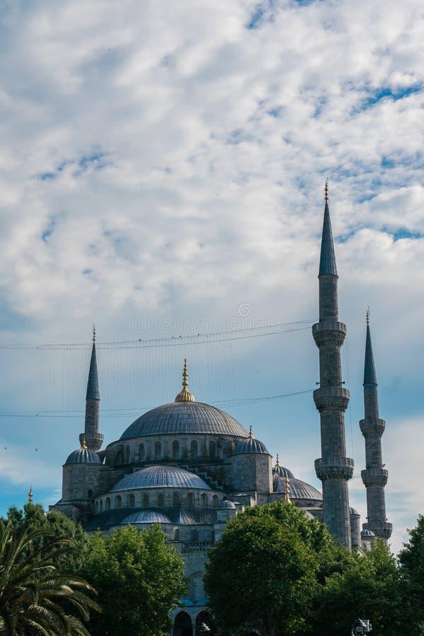 Mesquita em Istambul fotografia de stock royalty free
