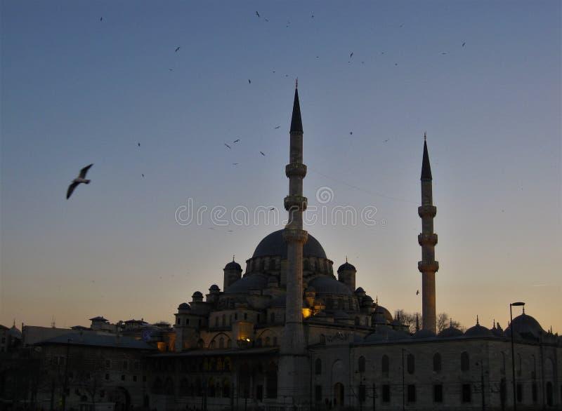 Mesquita no por do sol em Istambul imagem de stock royalty free