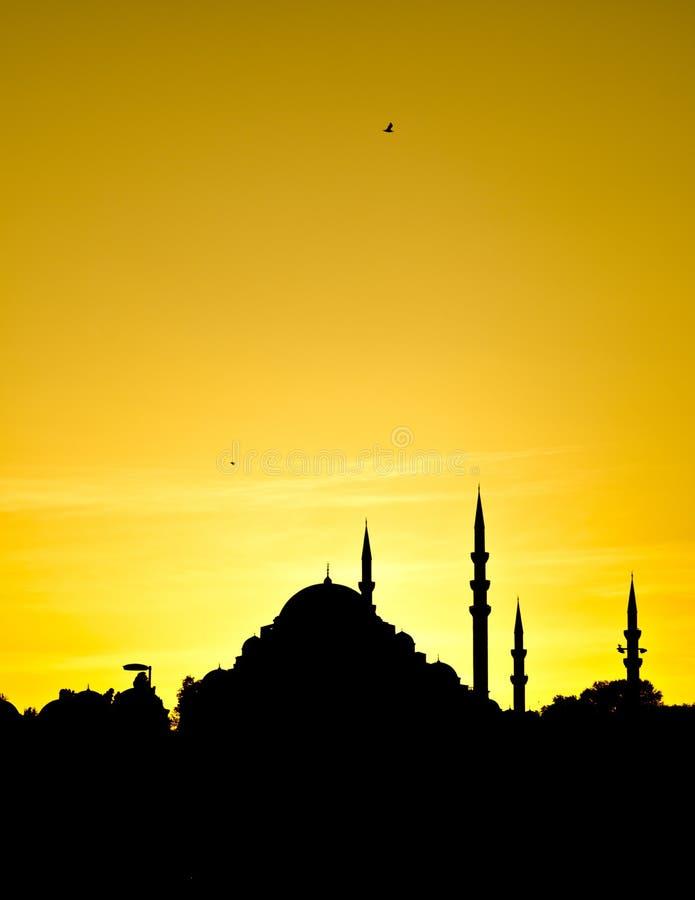 A mesquita nova no por do sol fotografia de stock royalty free