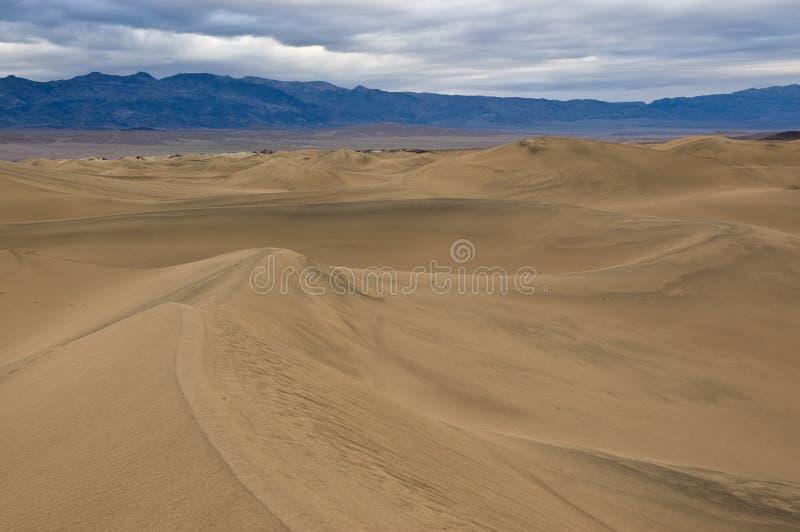Download Mesquite Flat Sand Dunes stock photo. Image of southwest - 14897258