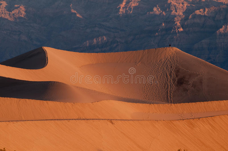 Download Mesquite Sand Dunes And Mountains In Death Valley Stock Photo - Image: 12365758