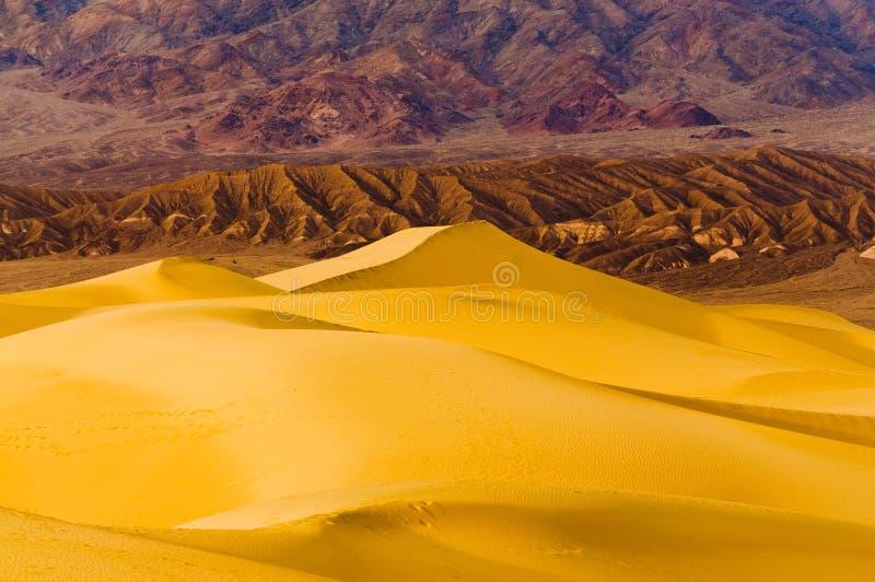 Mesquitedyn i Death Valley arkivfoton