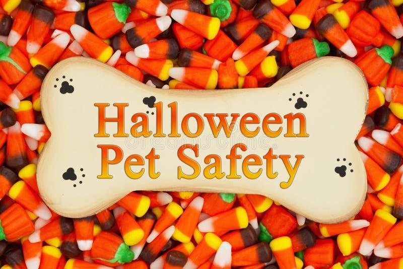 Message de sécurité d'animal familier de Halloween photo stock