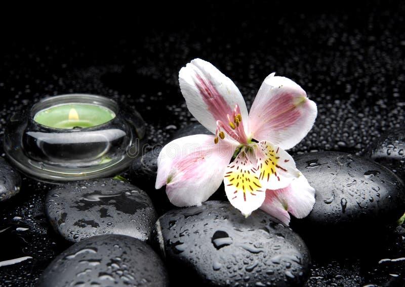 Message de station thermale d'orchidée images libres de droits