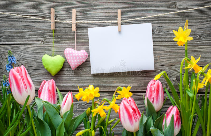 Message and hearts on the clothesline with spring flowers royalty free stock photography