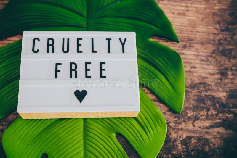 Message libre de cruauté sur le lightbox avec la feuille et le bois, concept de l'éthique de vegan photographie stock